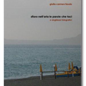 Copertina SFIORO NELL'ARIA LE PAROLE CHE TACI di Giulia Carmen Fasolo